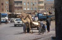 Yemen_1993_089_04-03-2016