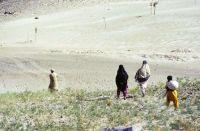 Pakistan_1991_0044