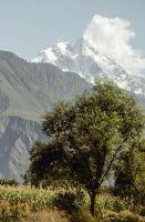 Pakistan_1991_0059