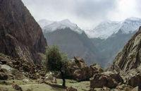 Pakistan_1991_0104