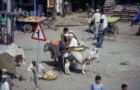 Pakistan_1991_0152
