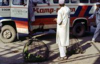 Pakistan_1991_0162